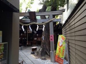 少彦名神社(神農さん)